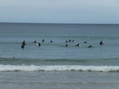Surfers waiting for the next wave!