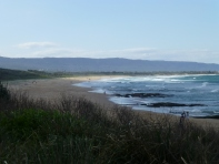 North beach, Wollongong