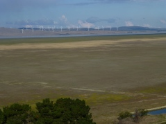 Windfarm on the far shoreline