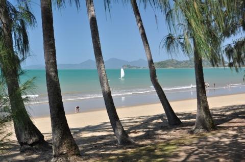 Picture postcard shot of Palm Cove Beach