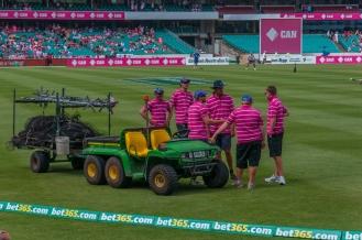 Groundsmen in pink!
