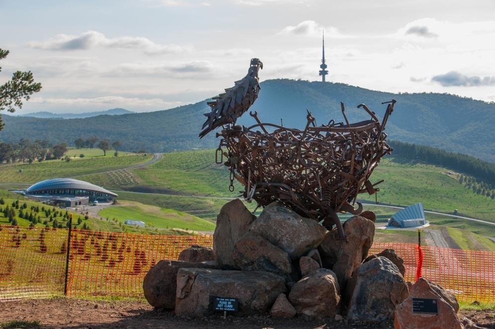 Eagles nest.