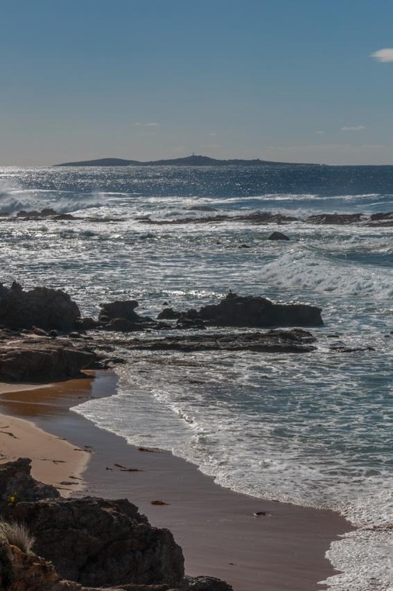 A better view of Montague island