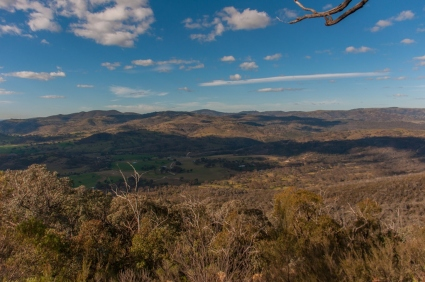 View from Cypress Pine Lookout