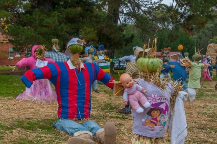 Some of the Scarecrows on display