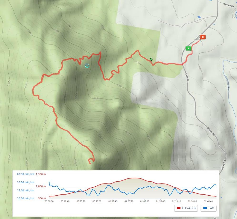 Today's Route on Map My Hike