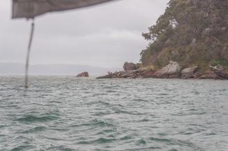 Fishing off the shoreline.