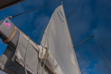 A view of the sails