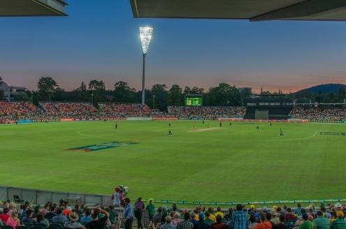 Fantastic evening for cricket